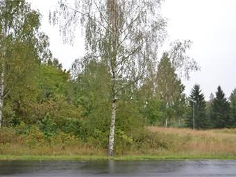 Myråsvägen, Myråsen, Arvika - Industritomt