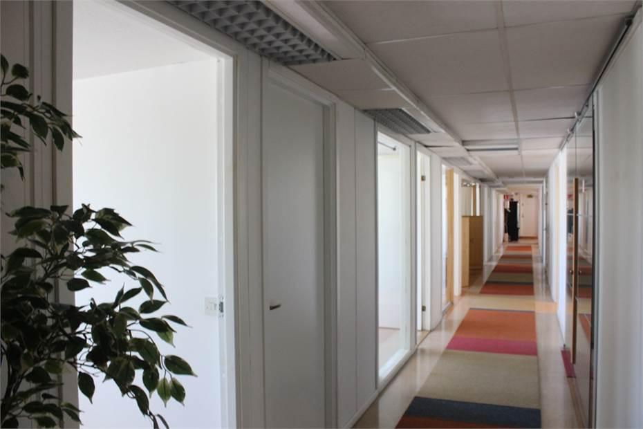 Korridor med mellanväggar i glas för bra ljusinsläpp
