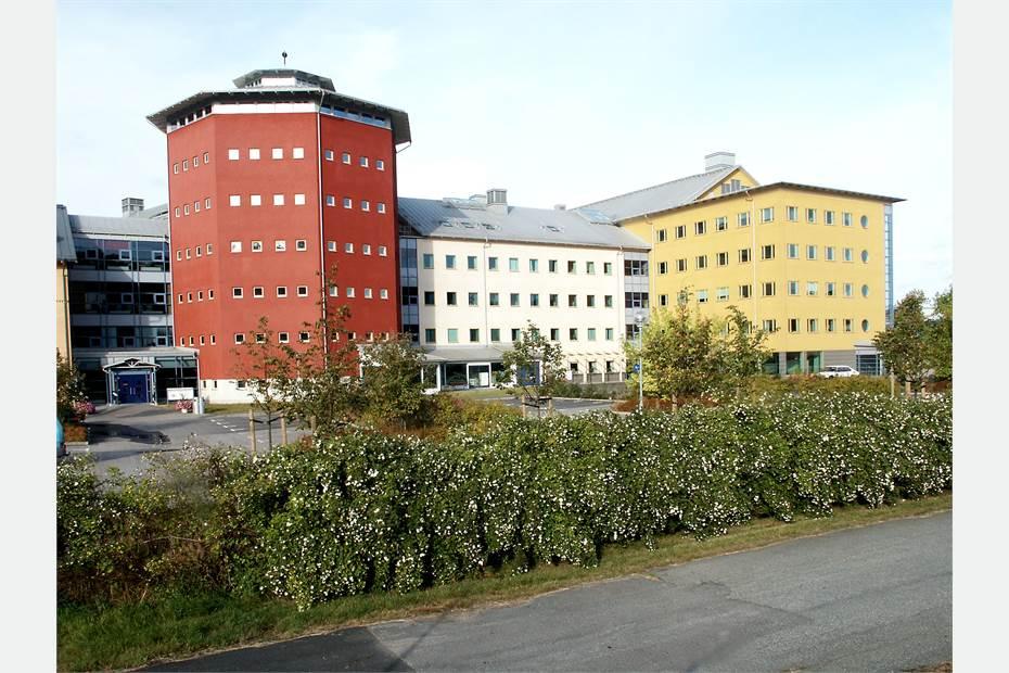 Soft Center, östra sidan